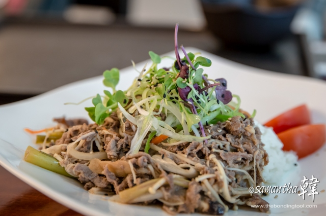 Korean Cuisine - Beef Rice-8463
