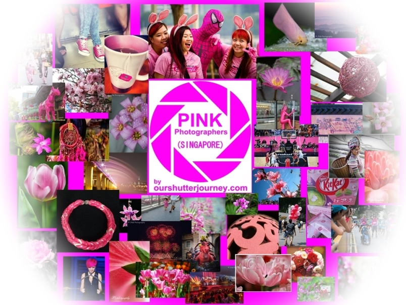 Pink Feature