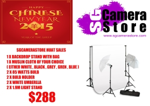 sgcamerastore store sales2