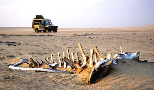 01N05f-IM4277-skeleton-coast-north-900 arebbusch d com