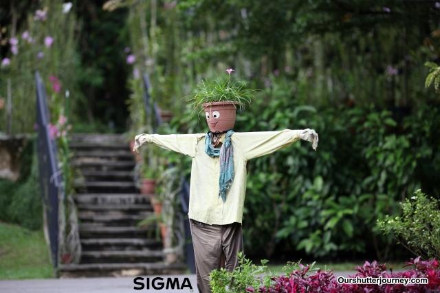 IMG_5071Sigma