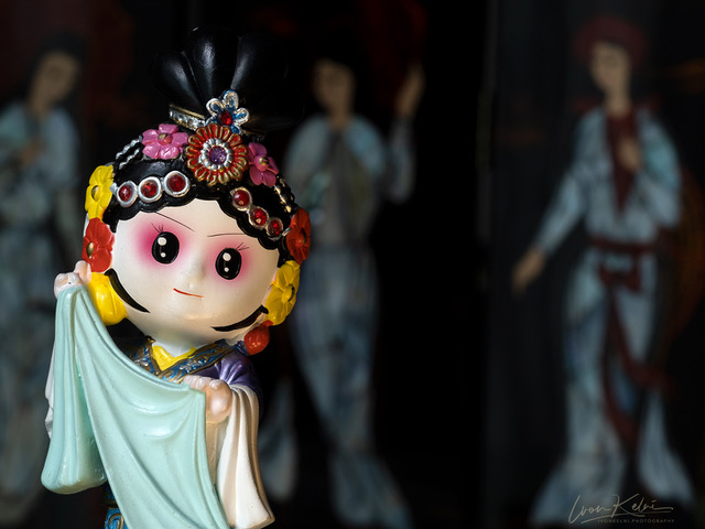 P5070910 - shanghai doll_ip